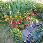 gardeners norwich